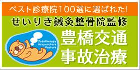 ベスト診療院100選に選ばれた!せいりき鍼灸整骨院監修豊橋事故治療