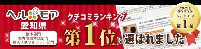 ヘルモア 愛知県クチコミランキング第1位に選ばれました